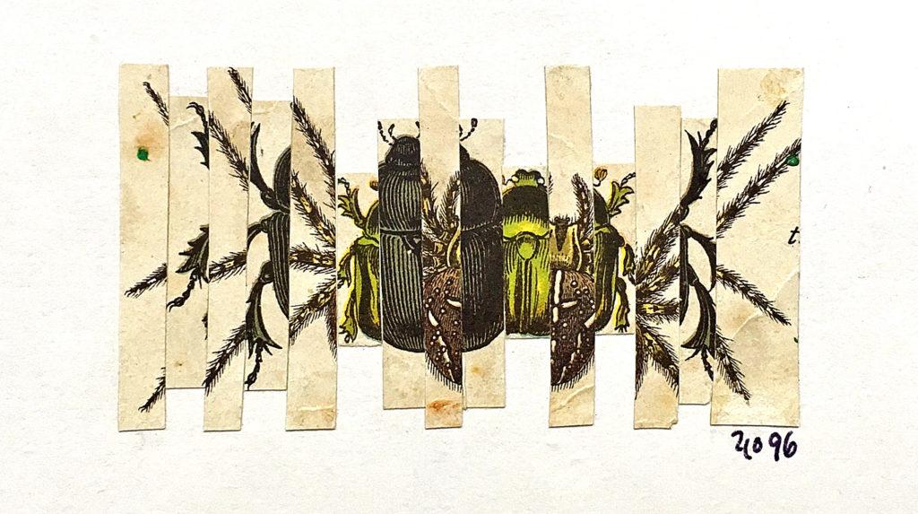 Polypové, 1996, 9 x 15 cm, koláž / v soukromé sbírce / č. 164
