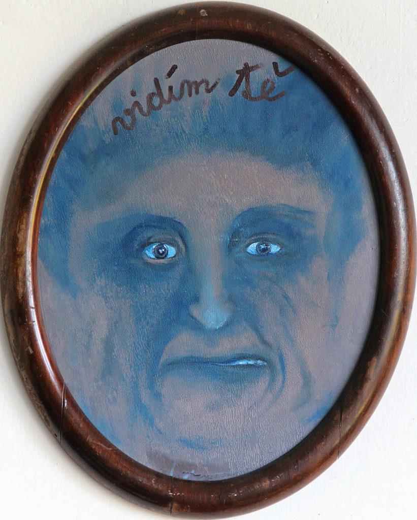 Maska schizofrenie, 2013, 33 x 27 cm - elipsa, olej na kartonu / v soukromé sbírce / č. 98